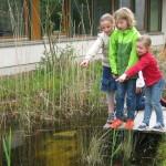 Schulgarten_Steg_Grundschule Heidenoldendorf